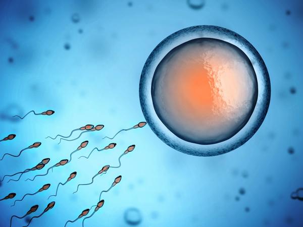 Hình ảnh 3: thuốc Semyn 100 cải thiện chất lượng, số lượng tinh trùng hiệu quả