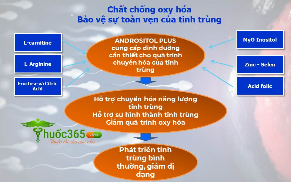 tác dụng của Andrositol Plus